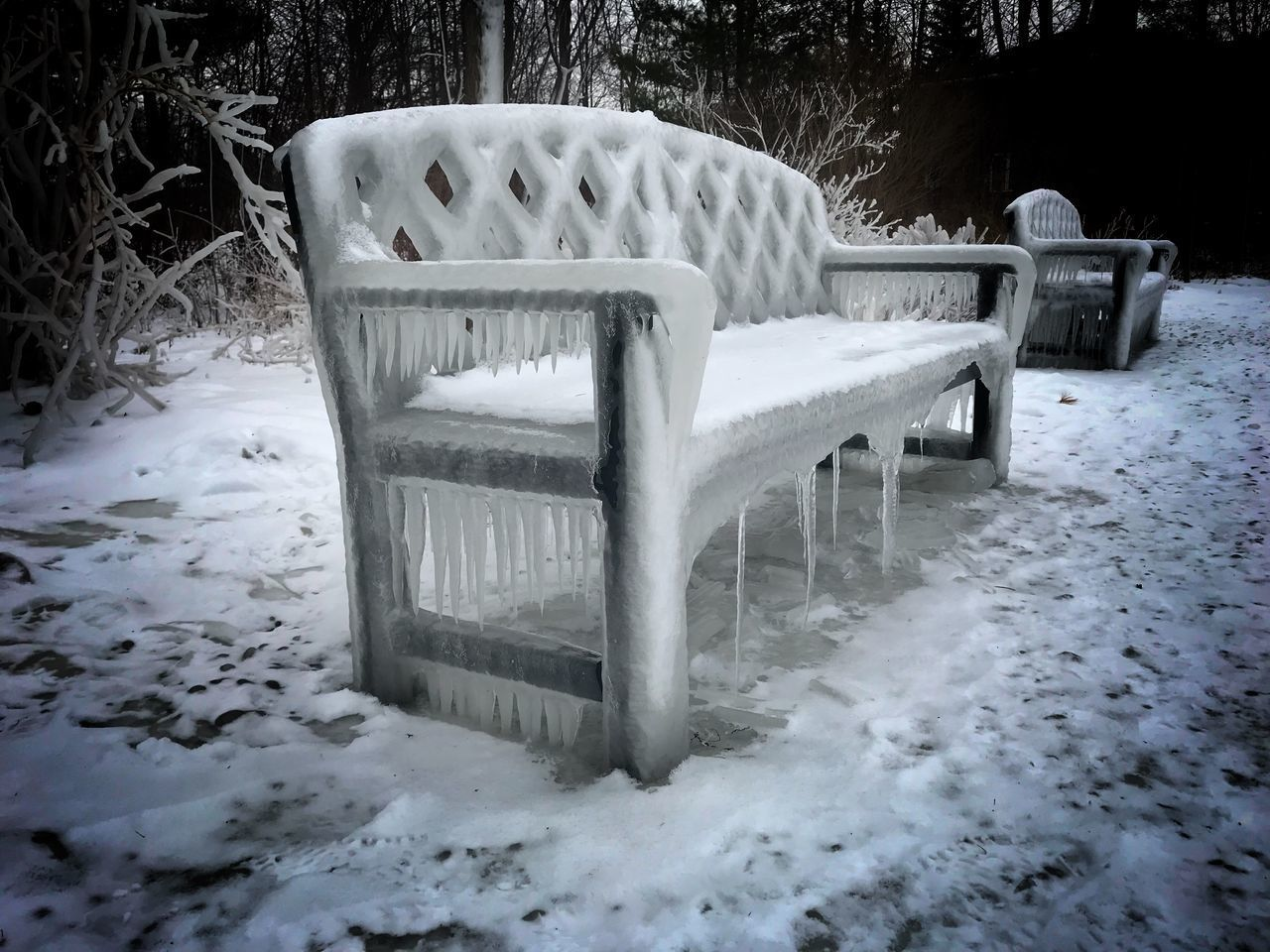 cold temperature, winter, snow, weather, chair, white color, nature, outdoors, no people, day, seat, landscape, beauty in nature, tree