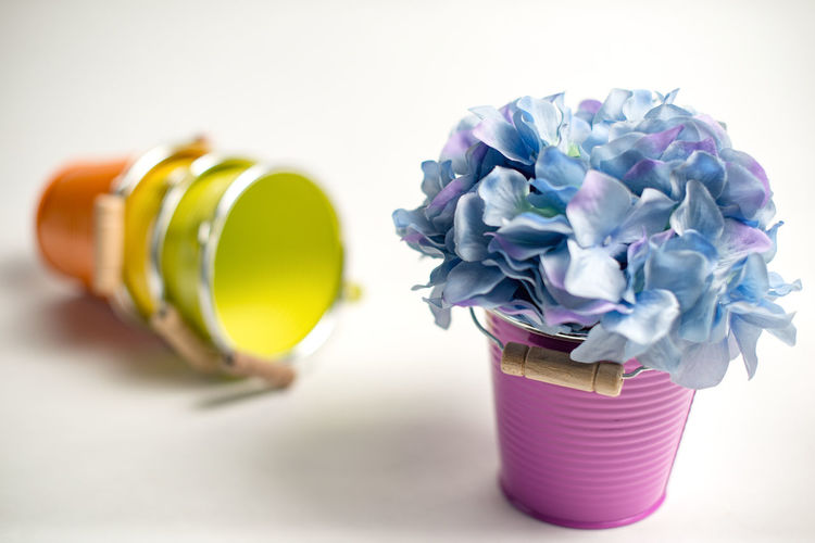 Close-up of purple flowers in jar on table