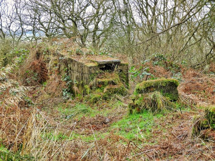 Remains Of Mining Industry Tramway North Yorkshire
