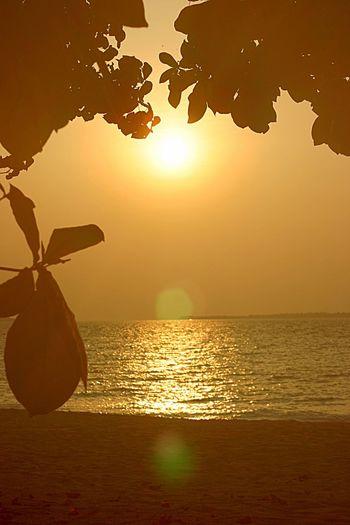 Maldivian Sunset, Kuredu Island Sun Spots Kuredu Beach Kuredu Island Kuredu Maldives Water Sea Sunset Sky Horizon Horizon Over Water Beach Beauty In Nature Land Scenics - Nature Tranquility Tranquil Scene Nature Reflection Orange Color Travel Idyllic Sunlight No People Outdoors