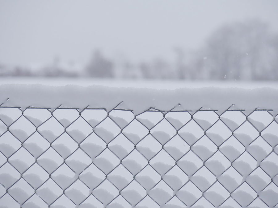 Fresh snow in mesh fence Mesh Winter Background Beauty In Nature Close-up Cold Temperature Day Fence Focus On Foreground Metal Nature No People Outdoors Patttern Protection Safety Sea Sky Snow Water Winter