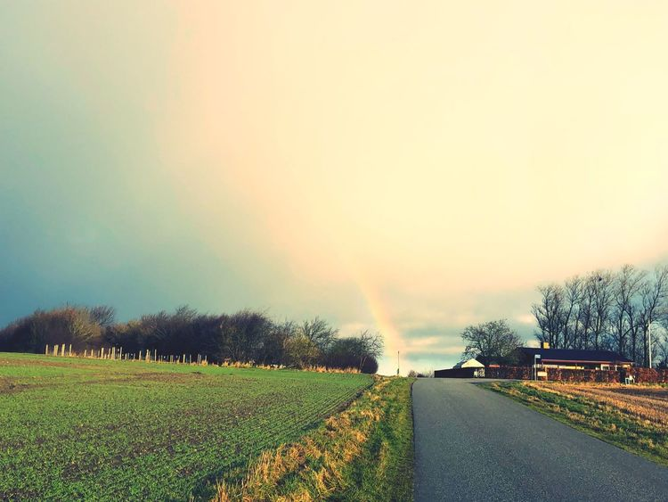 Rainbow 🌈 at the end of the road ... Countryside Copy Space In Sky Copy Space Rainbow Plant Tree Sky Transportation Road Car Field Landscape Mode Of Transportation Land Vehicle Environment Beauty In Nature Scenics - Nature Nature Tranquil Scene Motor Vehicle No People Tranquility Land
