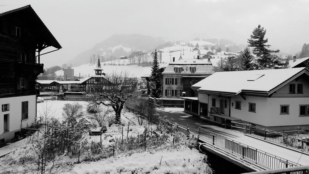 Winter Switzerland black&white Zweisimmen