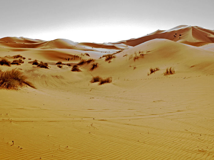 Sand dunes in the Sahara desert in the south of Morocco. the sandy desert of Erg Chebbi Erg Erg Chebbi Merzouga Morocco Sahara Sand Desert Land Sand Dune Climate Landscape Arid Climate Scenics - Nature Environment Sky Tranquility Non-urban Scene Tranquil Scene Nature Remote No People Day Africa Adventure