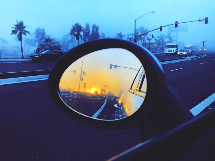 Morning commute Sky Transportation Motor Vehicle Car Land Vehicle Mode Of Transportation Reflection Vehicle Interior Glass - Material Street Tree Shape No People Transparent Road Outdoors Side-view Mirror Nature Mirror City My Best Photo