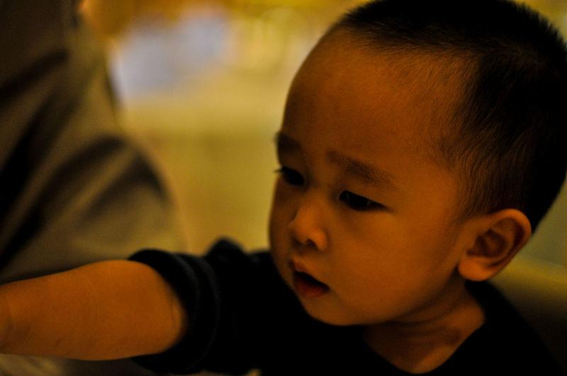 Little boy potrait