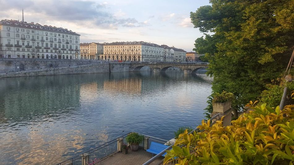 Reflection Blue Blue Sky And Clouds Blue Sky White Clouds Blue Water Turin Turin Italy Riverscape Riverview River Reflexions Bridge Beauty In Nature Nature Water Day Sky Outdoors Tree Architecture No People