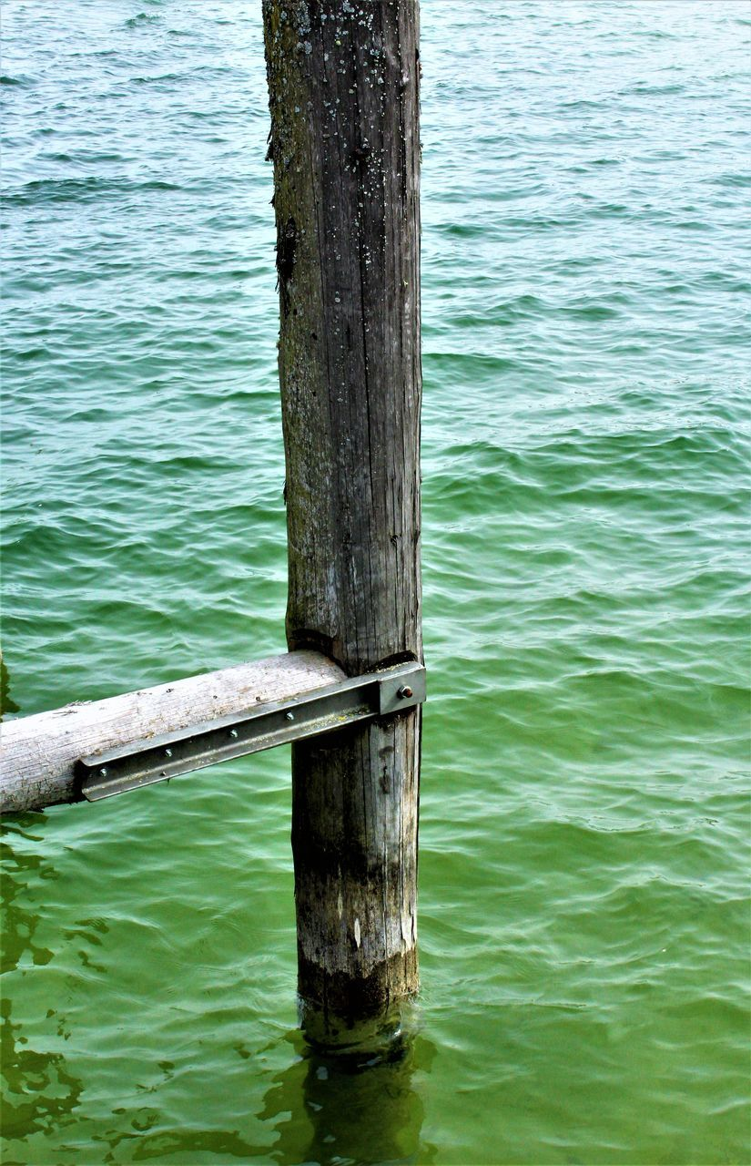 water, lake, no people, tree trunk, outdoors, day, wooden post, nature, tree, close-up