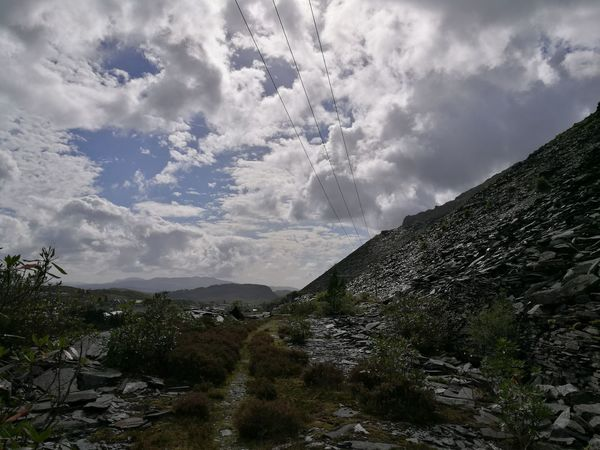 Tree Cloud - Sky Nature Sky Beauty In Nature Growth Tranquility No People Scenics Tranquil Scene Day Outdoors Lush - Description Blaenau Ffestiniog North Wales