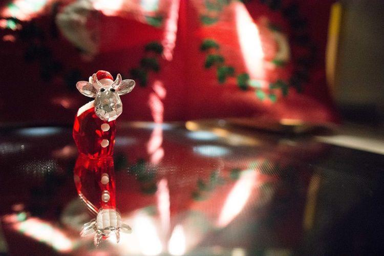 Bokehlicious Thun Xmas Xmas Decorations Bokeh Bokeh Photography Celebration Christmas Christmas Decoration Christmas Ornament Close-up Illuminated Indoors  Night No People Red Svarovski Thunderstorm