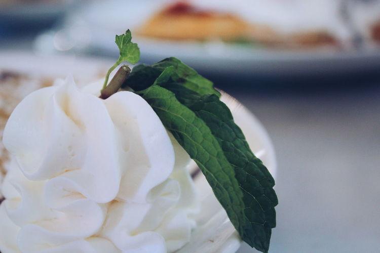 Close-up of mint on ice cream