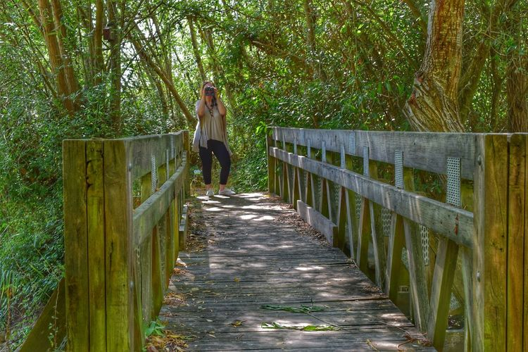 Full Length One Person Tree Walking Outdoors Day People Rural Scene Standing Real People One Woman Only Nature Wood - Material Woods Wooden Bridge Bridge - Man Made Structure Bridge View Bridge Photography Bridge Over Water Bridge Architecture Bridgesaroundtheworld Bridge, Viaduct, Overpass, Fixed Link, Aqueduct, Join, Link, Connect, Unite; Straddle; Overcome, Reconcile
