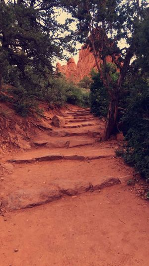 Hiking Weather // Mountains Hiking Adventure Nature Stairs Path View Simple Photography Peace And Quiet Colorado