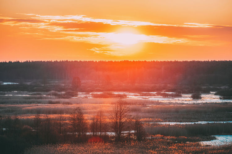 Beautiful Sunrise Over Forest And River In Early Spring. Dramatic Sky With Sun Over Morning Nature. Sunset Sunrise Sky Plant Idyllic Tree Fog Landscape Sun Land Red Orange Clouds Beautiful Forest River Early Spring Dramatic Morning Nature The Great Outdoors - 2019 EyeEm Awards