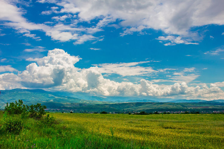 Europe European  Bulgaria Sky Cloud - Sky Landscape Environment Beauty In Nature Tranquility Scenics - Nature Tranquil Scene Land Field Nature Grass Plant Green Color No People Non-urban Scene Growth Day Outdoors Rural Scene Colour colour of life Colours Colourful Color Colored Background