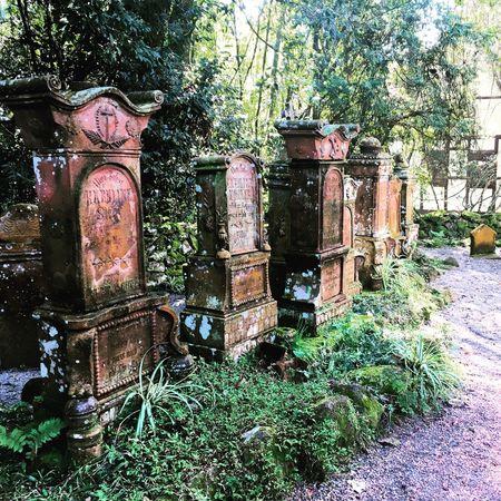Cemetery Photography Cemetery Cemetery_shots Brazil Serra Gaúcha Nova Petrópolis