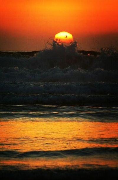 Ocean In My View