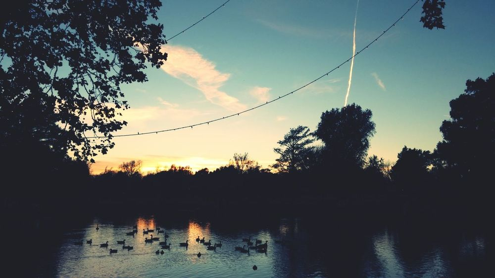 Taking Photos November Sunset At The Park