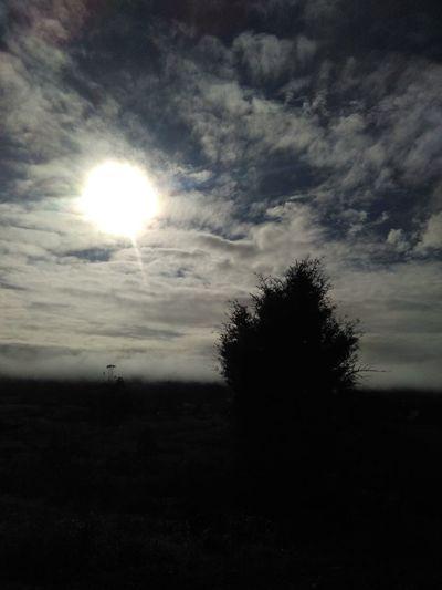 Sea Of Fog Sun