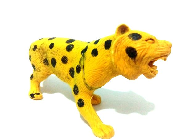 Tigre de juguete Tigre Juguete Diversion Diversion Jugar Animal Salvaje Nature Colombia Antioquia