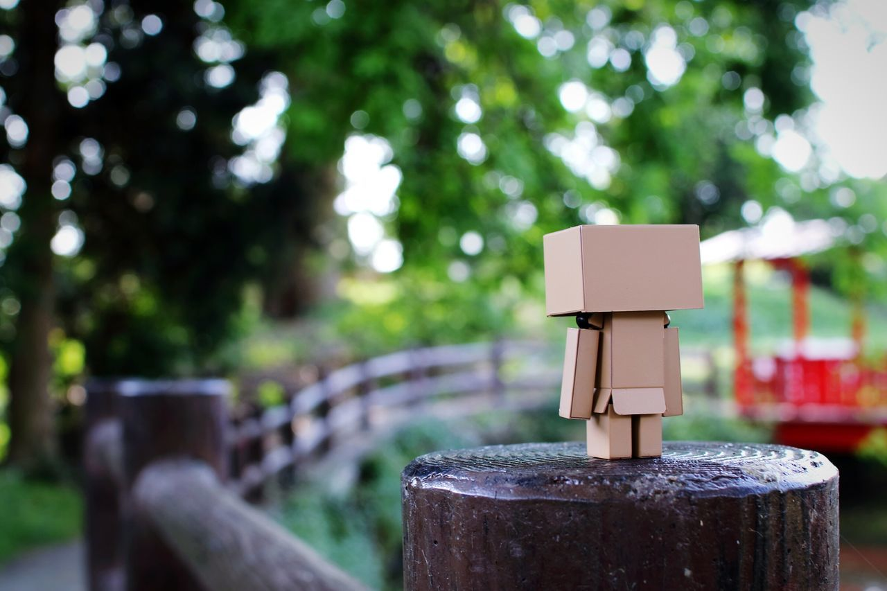 Danbo On Wooden Post