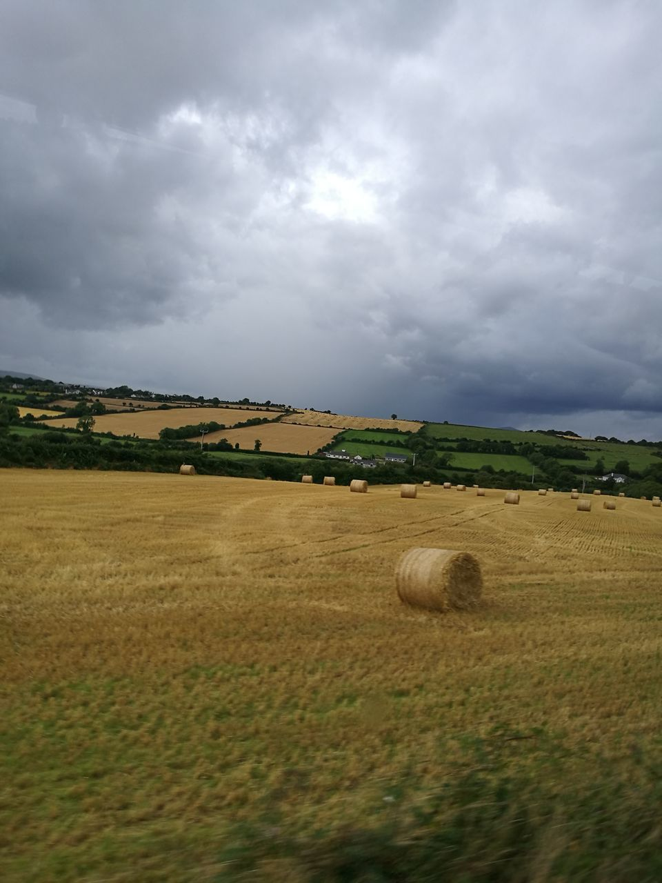 field, agriculture, landscape, bale, farm, cloud - sky, rural scene, nature, hay, tranquil scene, tranquility, beauty in nature, sky, hay bale, scenics, crop, no people, day, grass, outdoors, tree, combine harvester, mammal