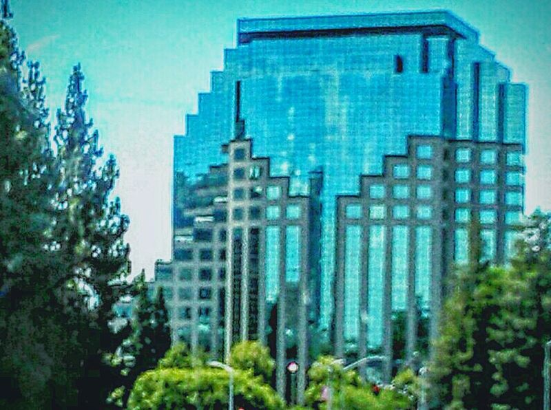 Trees Downtown Sacramento  Architecture Photography Street Photography Reflections Reflections In The Glass Windows Building Photography Eye4photography  Reflection In The Window My Photography Taking Photos ❤ Sky And Clouds