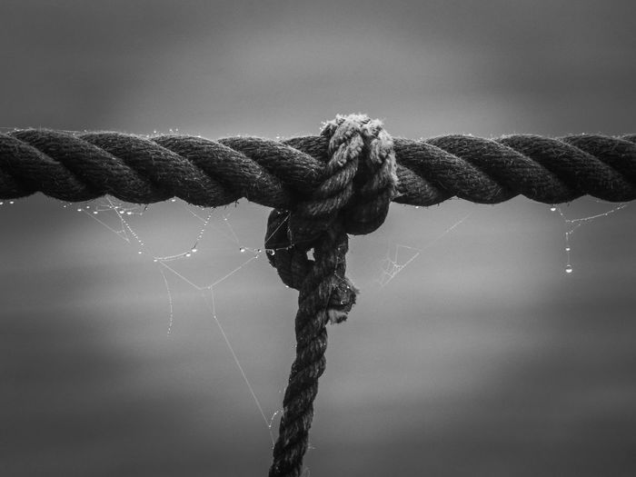 Close-up of water drop on rope against sky