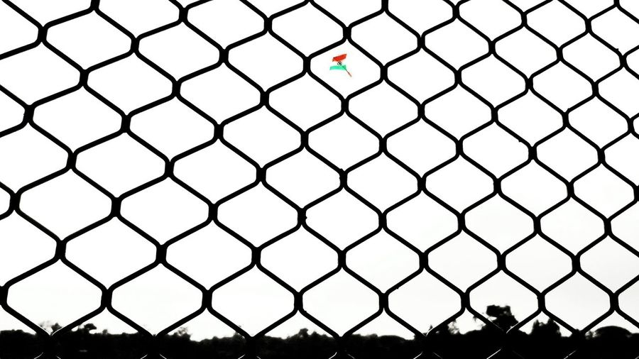 Chainlink Fence Security Metal Protection Safety Day Full Frame Backgrounds Outdoors No People Sky Nature Kite Kites India Indian_Flag India_clicks India_gram Indian Summer Freedom First Eyeem Photo