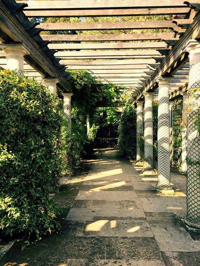 Architecture No People Built Structure Old House Garden Photography Column Sunlight Nature Secret Garden United Kingdom