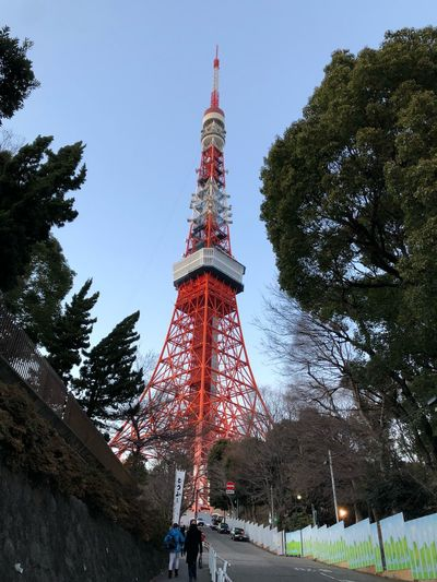 Tower Tall - High Architecture Tree Built Structure Low Angle View Travel Destinations
