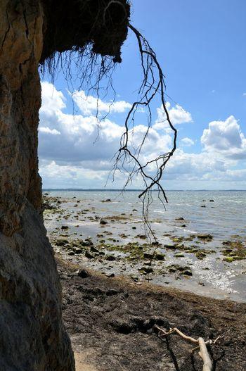 Baltic Sea Low