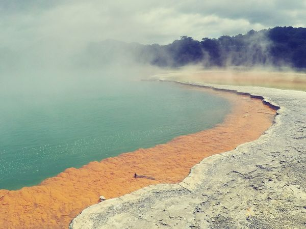 Water Lake Nature Hot Spring Landscape Nature Reserve Geyser Wai O Tapu New Zealand My Trip My Travel