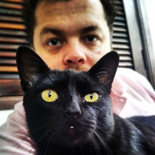 Feliz sexta feira 13 pra nós que não somos supersticiosos! Um ou especial do Frederico!!! Sextafeira13 13th 13thfriday 13friday cat gato gatopreto blackcat frederico goodmorning bomdia