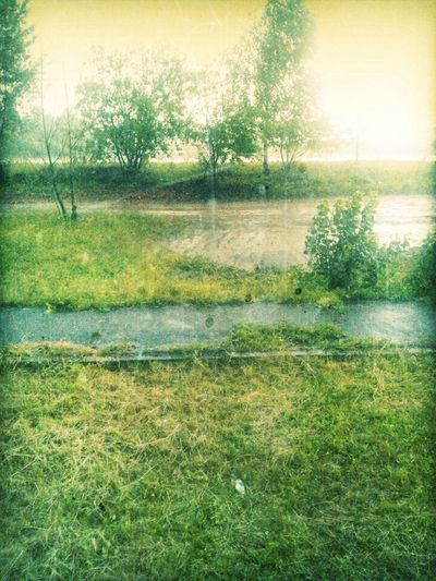 гром дождь гроза вот оно #лето