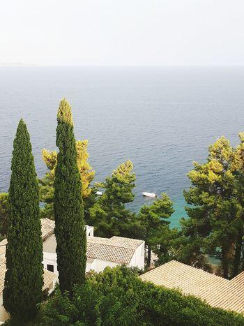 seasidescape Trees Buildings Sea Sea And Sky Nautical Vessel Sea Sky Horizon Over Water Shore Coast