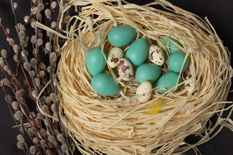 Egg Basket Food No People Container Easter Still Life Easter Egg Food And Drink Celebration Pattern Holiday Animal Egg