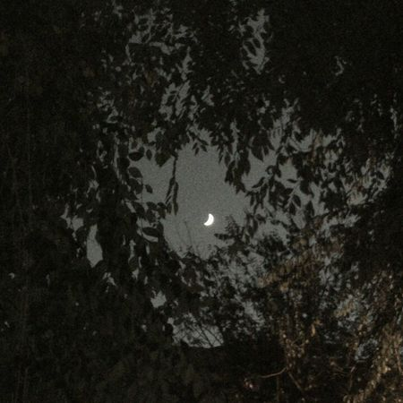 bona nit lluna...bona nit mon!! Eyembarcelona Eyemnaturelover Eyembestpics