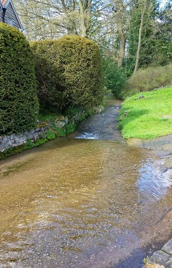 Countryside Country Life Stream - Flowing Water Nature Outdoors Village Life Village Photography