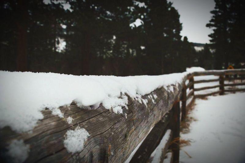 Sprague Lake Frozen White Color Boundary