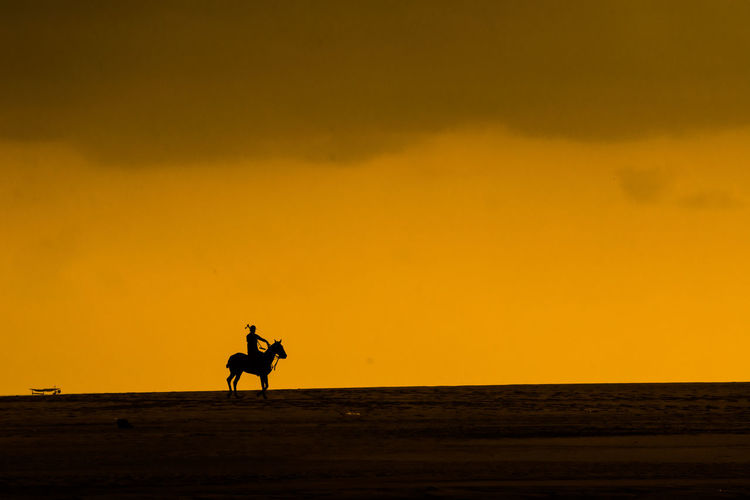 Silhouette Of Man Playing Polo