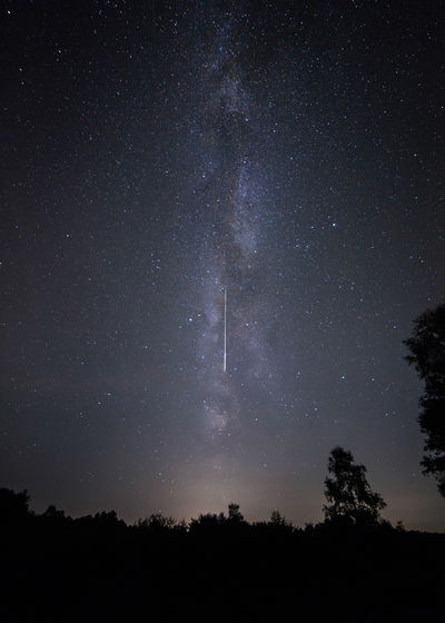 Scenic view of milky way over trees