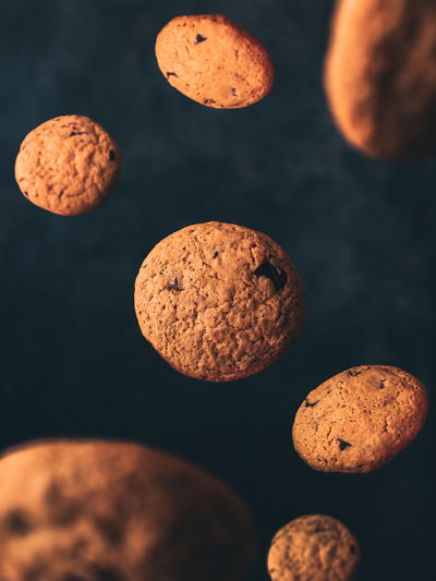High angle view of cookies floating