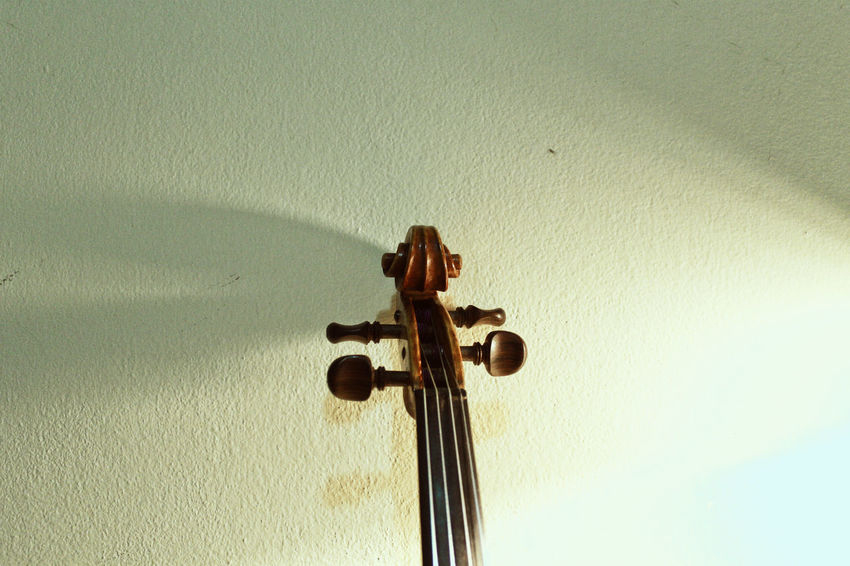 Violin details Classical Music Curl Music String The Week On EyeEm Wood Close-up Day Detail Indoors  Instrument Low Angle View Musician No People Violin Violin Curl Violin Strings Violinist Wood - Material