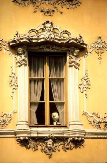 Hello Loriot Window View Laugh What Is This? Check This Out