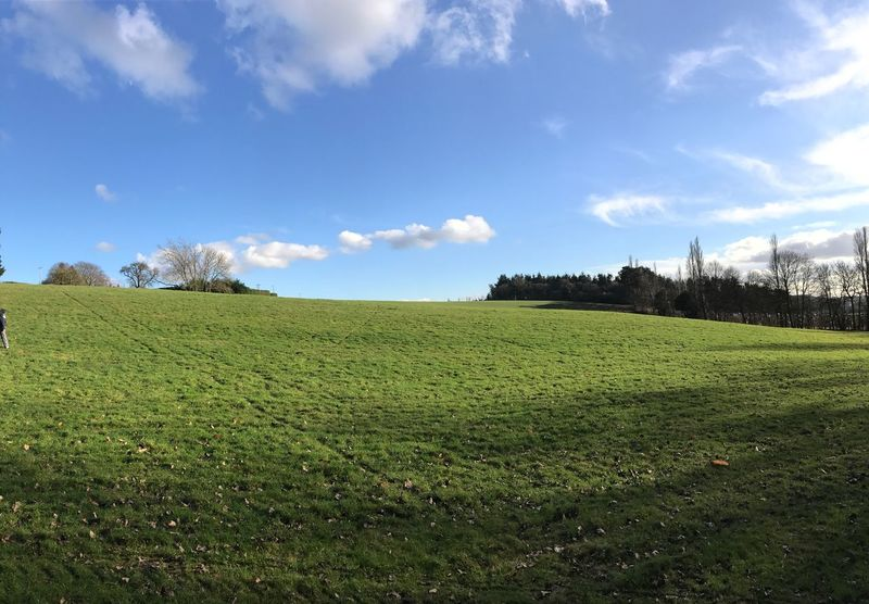 Sky Landscape Field Green Color Grass Nature Growth Rural Scene Scenics Agriculture Beauty In Nature Day Tranquil Scene No People Tree Outdoors Cloud - Sky Architecture