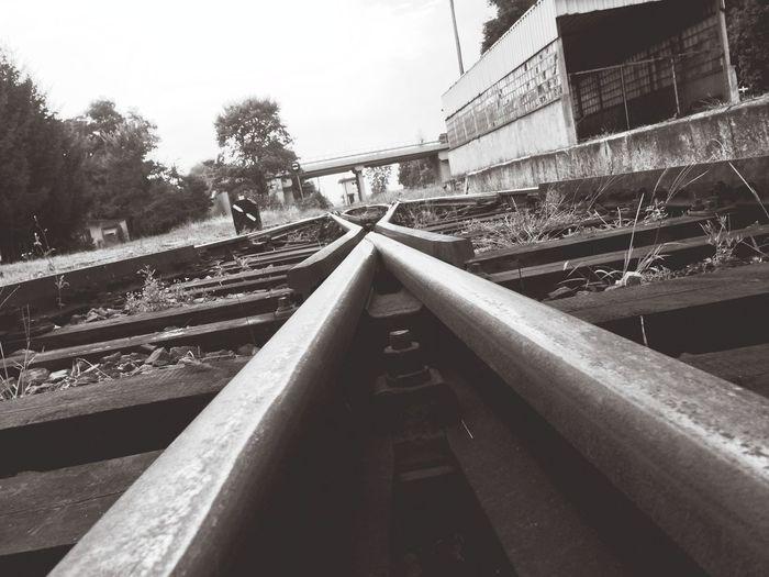 IPSLines Train