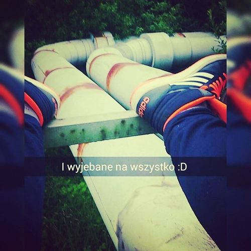 Chill Wyjebane Po Całości Na Pokładzie L4l F4F Likeforlike Followme Followforfollow Likeforfollow Followforlike Like4like Follow4follow