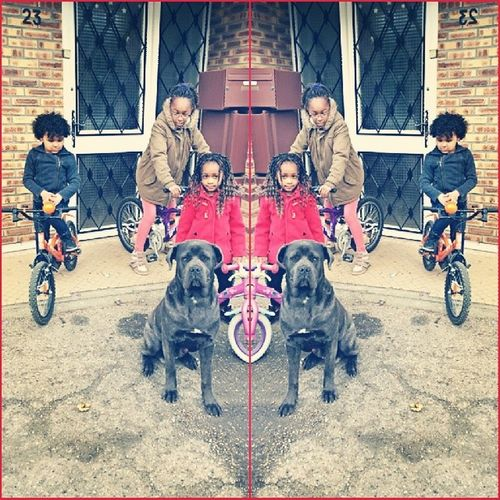 Dimanche en famille ... Sister , Loys Canecorso  ItalianMastiff dog dope igers vscogrid urbanart urbex jj_aban tbt tweegrambeautiful love beautiful happy picoftheday amazing