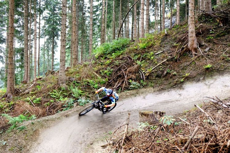 EyeEm Eyeemphotography Trail Steep Slope Soil On The Ground Fujixt2 Fuji Sportsphotography Sport Downhill/ Freeride Downhill Mountainbike MTB Enduro Colour Green Weather Condition Foggy Europe Travel Destinations Tree Forest Plant Bicycle Ride A New Perspective On Life